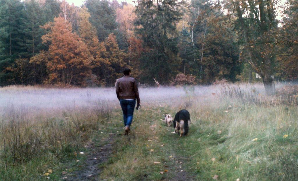 Frau mit Hunden im Nebel