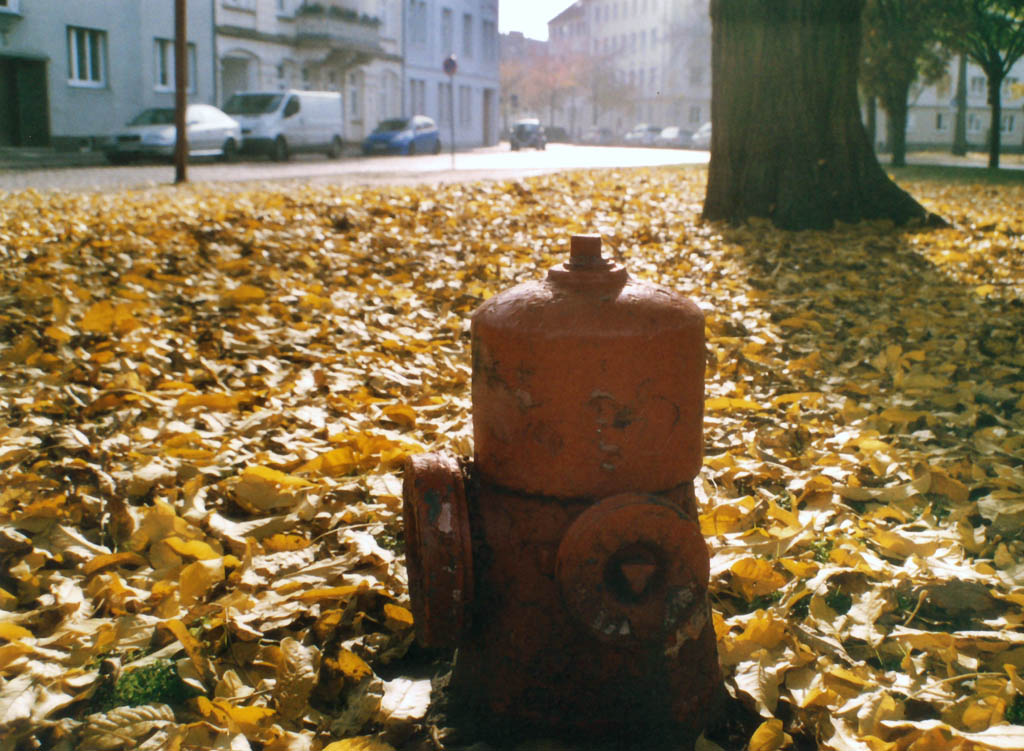 """Hydrant in Gold"""