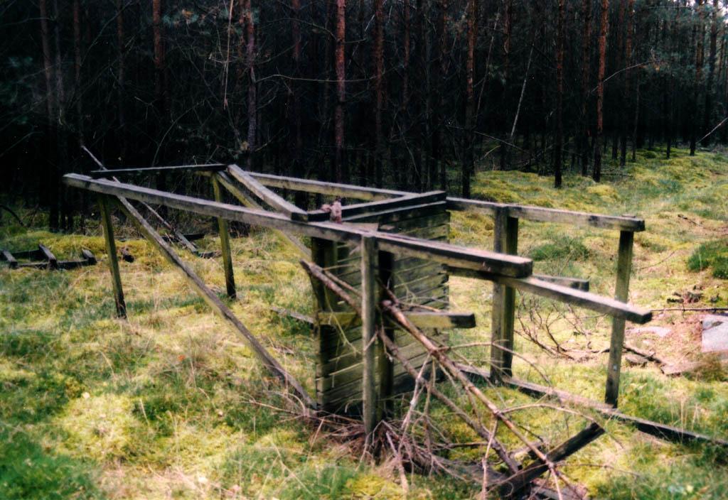 """""""In 15 Bildern durch den Wald"""""""