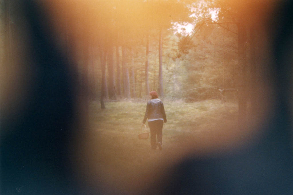 """Vorschau 2/2: """"Vignette aus Borke"""" ('In 15 Bildern durch den Wald')"""