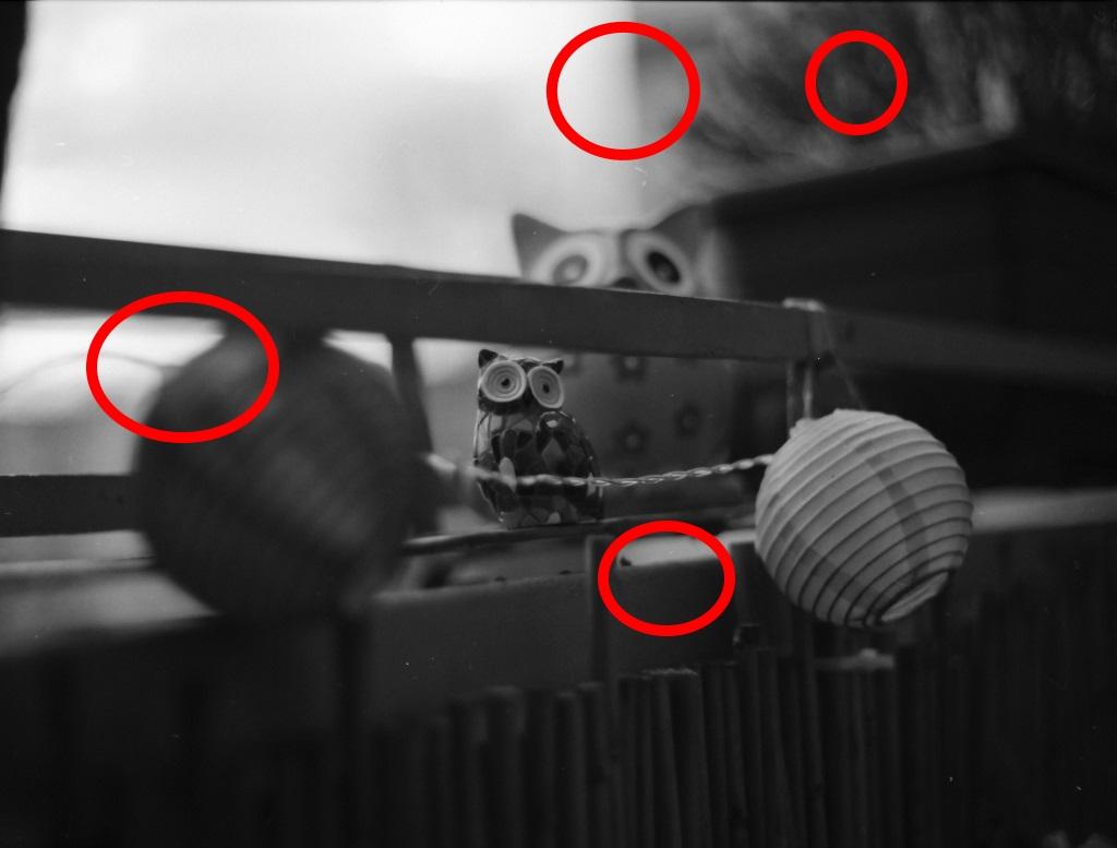 Russe gegen Japaner: Ein Objektivvergleich des MC Volna 3 mit dem Mamiya Sekor C!