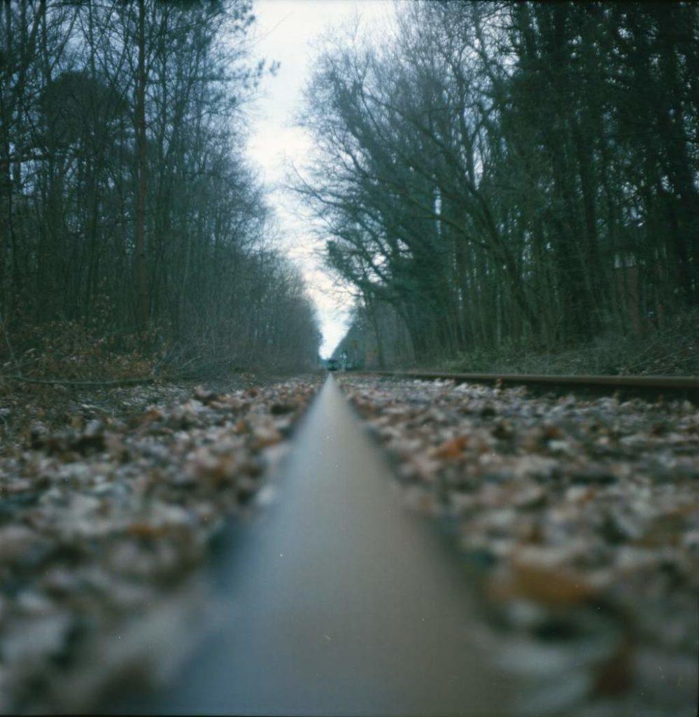 Gleise im Wald auf Kodak Portra 400