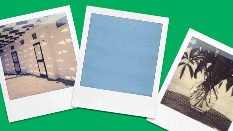 Drei Polaroid Bilder nebeneinander