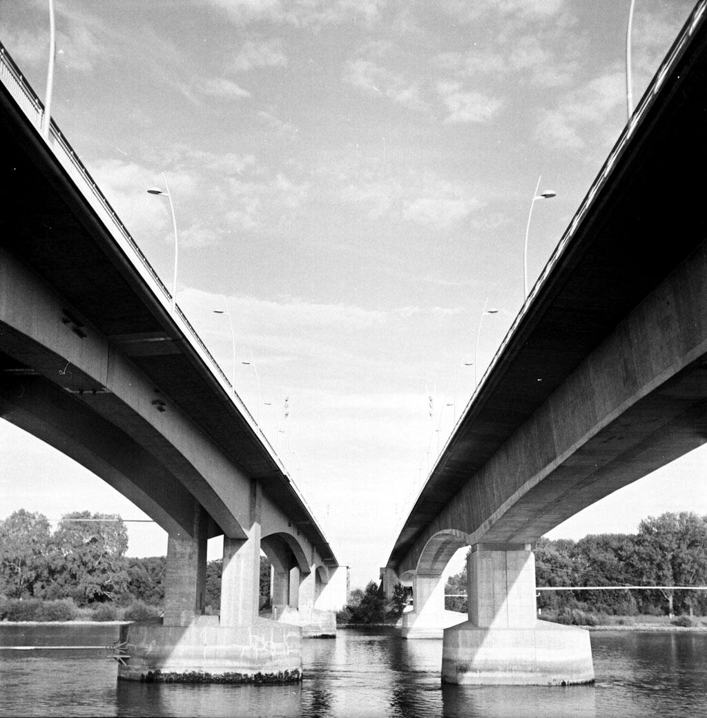 Brücken zu Worms